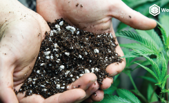 DIY Organic Soil